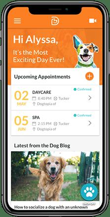 Dogtopia App