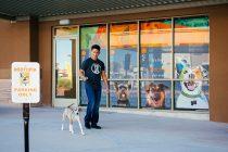 Dog Leaving Dogtopia Facilities