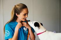 Dogtopia worker training dog