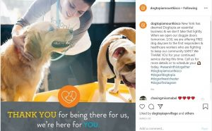 Dogtopia Mount Kisco offers free dog daycare to New York first responders and healthcare workers.