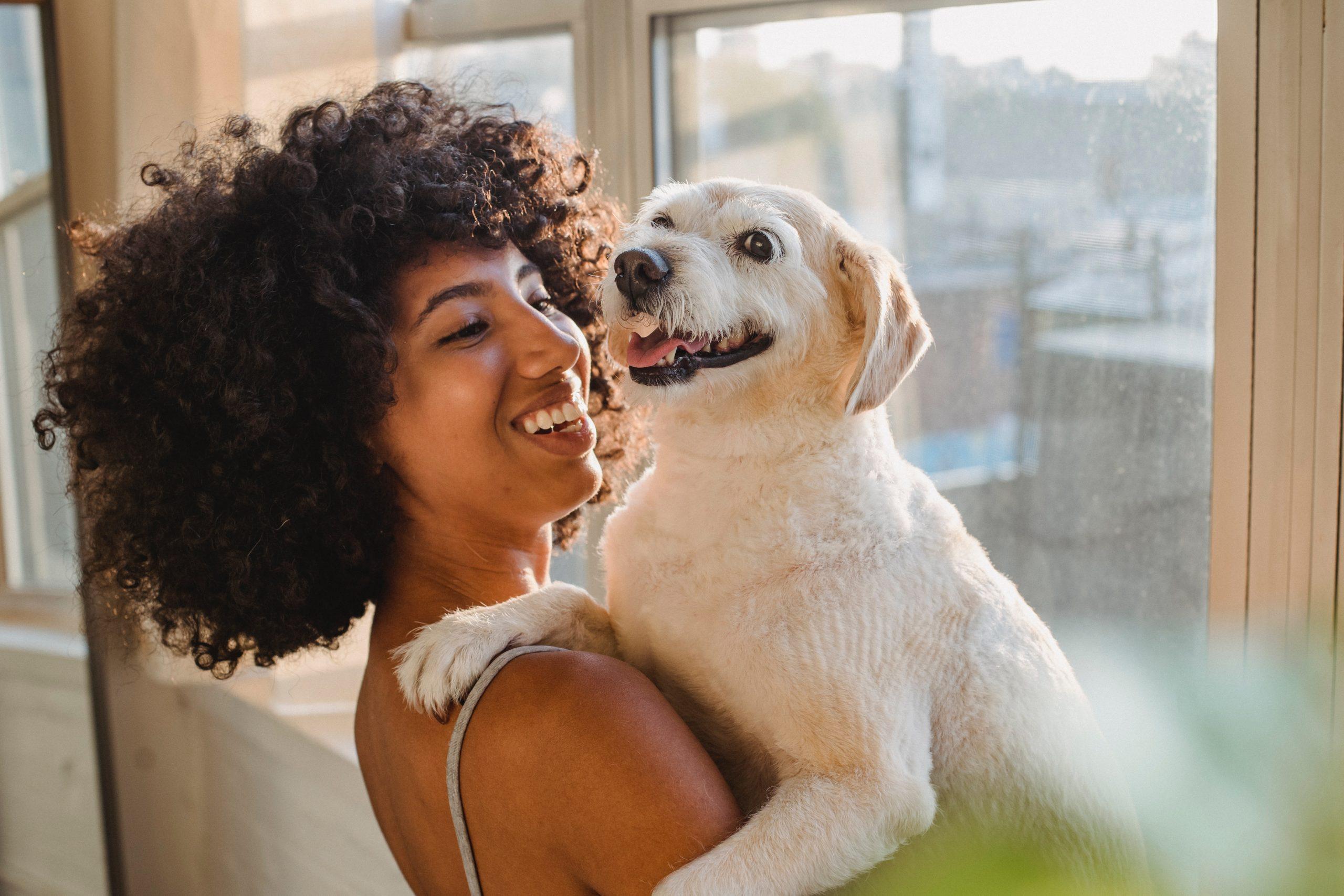 Résolutions pratiques du Nouvel An pour votre chien