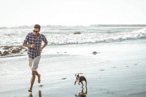 Dog-friendly spring break activities - pet-friendly beach