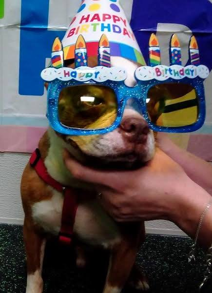 Smeagol at the January Birthday Party