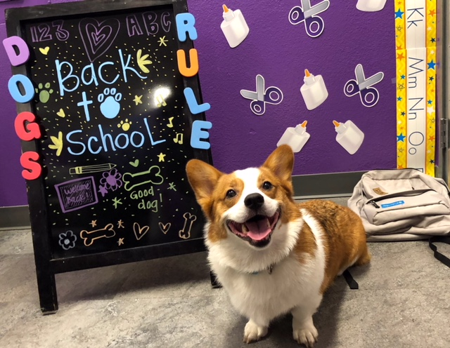 Kogi's Back To School Picture