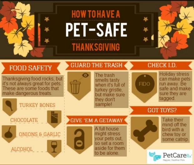 pet boarding in Utica MI for dogs