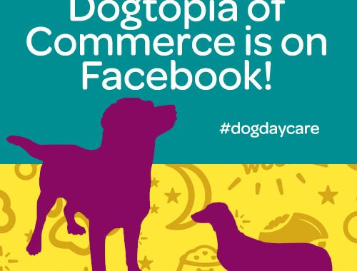 dogtopia of commerce facebook