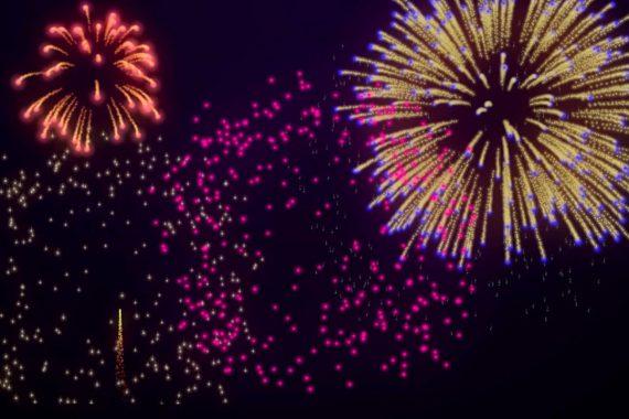 fireworks pet boarding