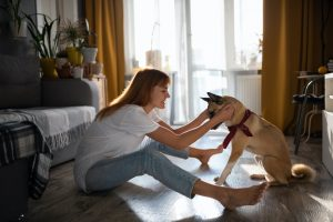 thinking about if dog boarding is worth it? The cost is with Dogtopia Galleria