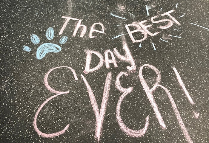 The Best Day Ever, written on the floor in chalk