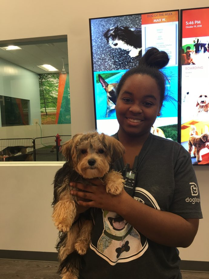 Michayla With Jazzy The Yorkshire Terrier