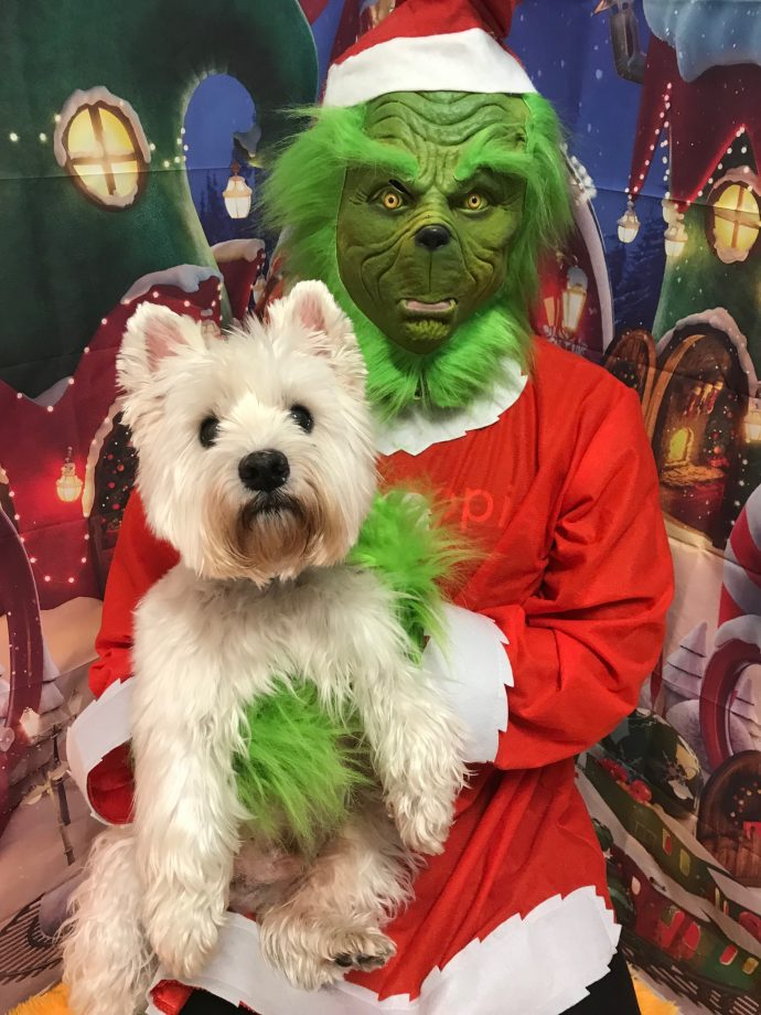 Grinch hugging Max the terrier