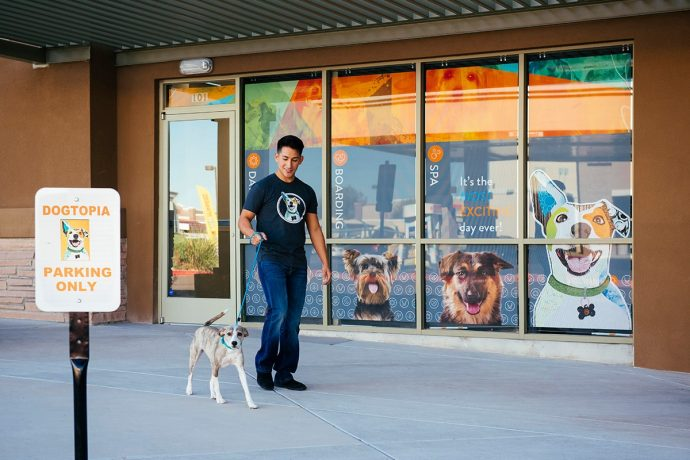 Dogtopia employee walking a dog