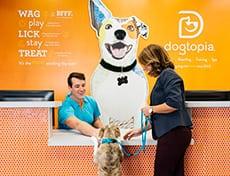 dog at front counter
