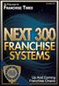 next 300 franchise systems logo