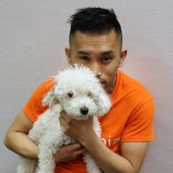 Playroom attendant Irvin sits down with this lovable toy poodle Mocha!
