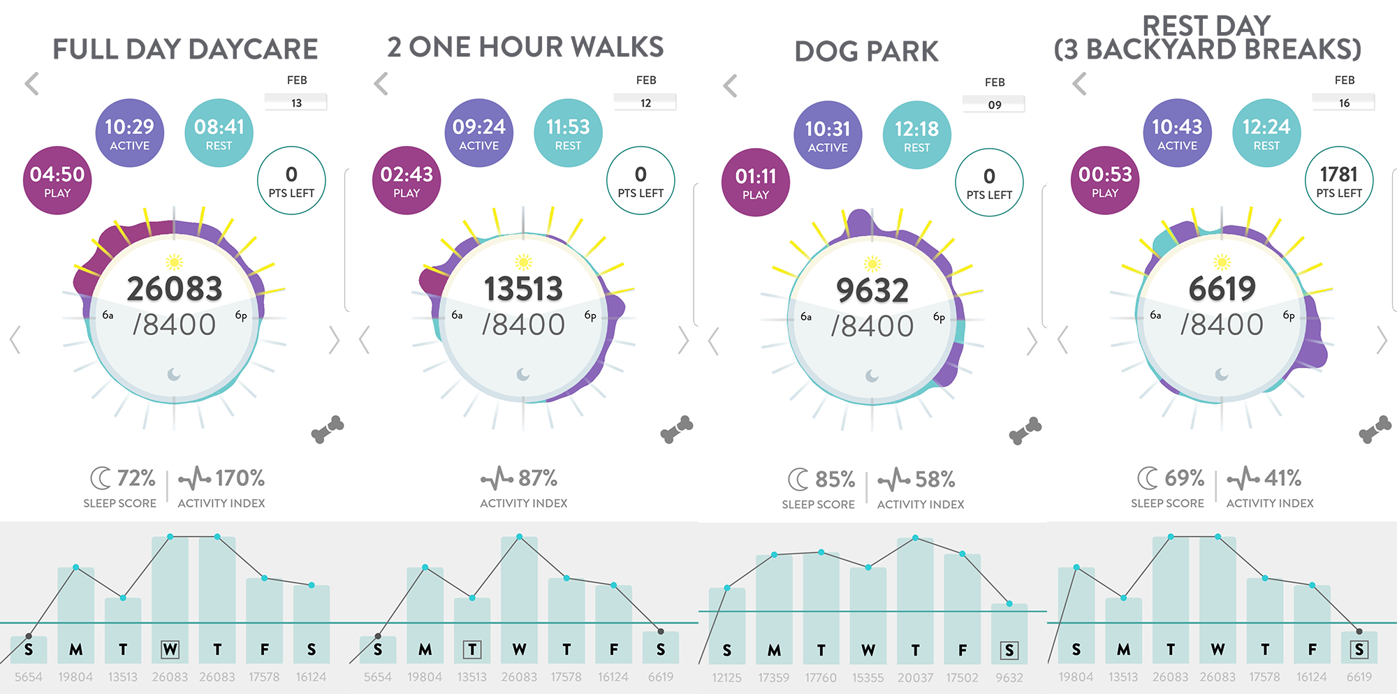 dog activity tracker comparison