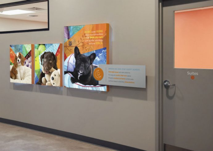Hallway with a door leading to boarding suites at Dogtopia of Deer Park.