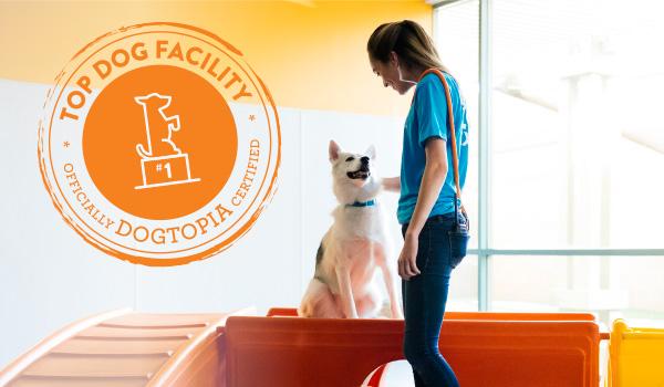 Top Dog Dogtopia Facility