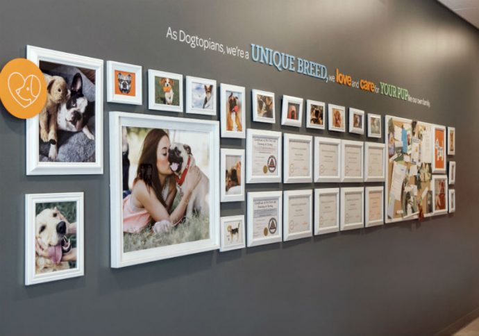 Certificates and dog pictures hanging on the wall at Dogtopia of Harbor Steps.