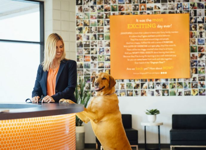 Owner and a dog standing in the lobby at Dogtopia of Harbor Steps.