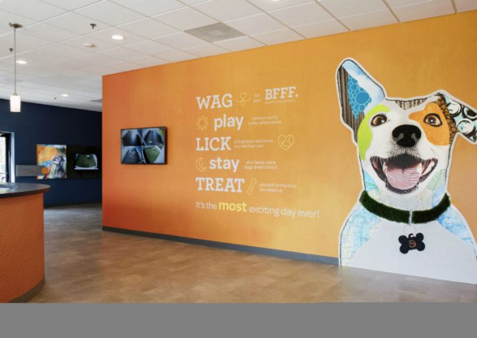 Welcome wall with the logo at Dogtopia of Applewood.