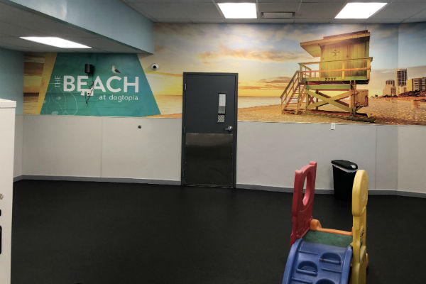 Look inside the playroom at Dogtopia of Yorktown