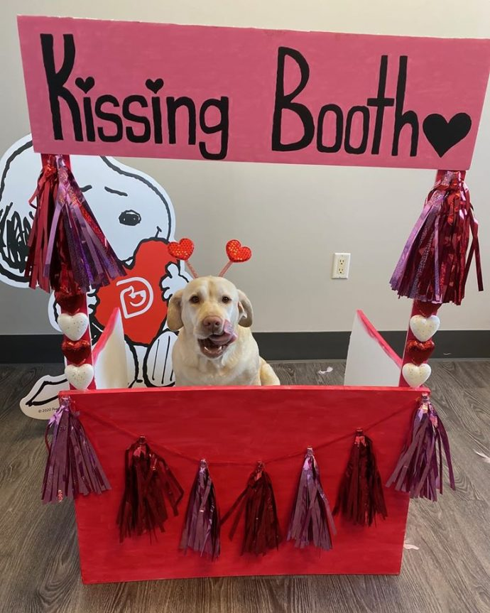 Kissing Booth Party