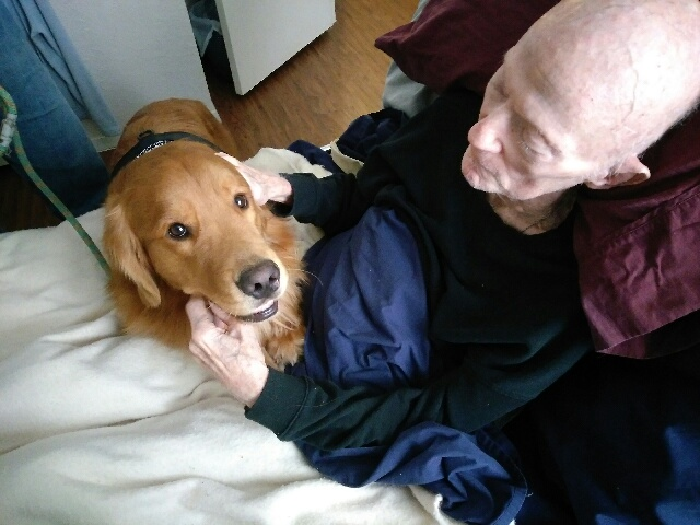 Pet Therapy – Meet Boomer