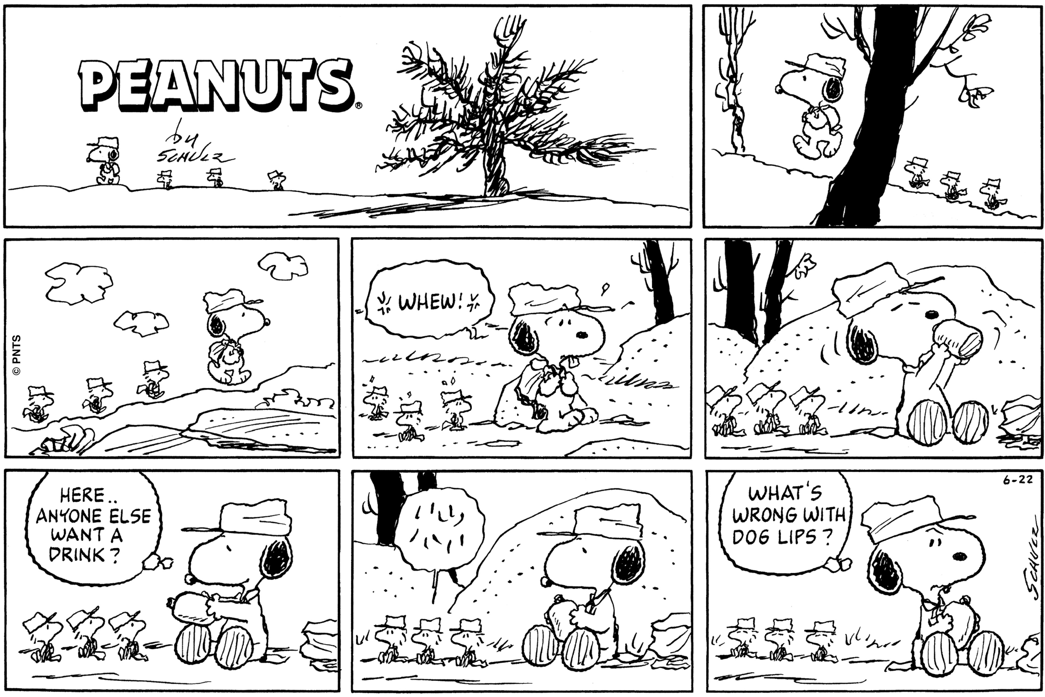 Snoopy Comic